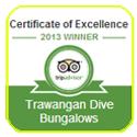 Gili-IDC - Trawangan Dive - Gili Islands - Certificate of Excellence